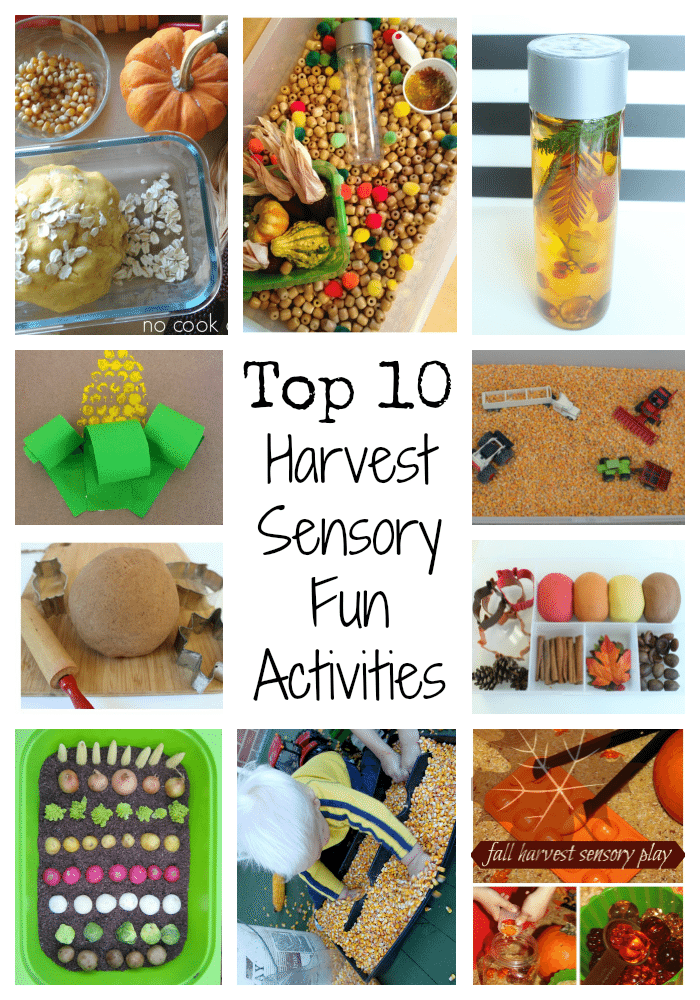 Adventures of Adam Top 10 Harvest Sensory Fun Activities